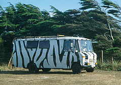 Mercedes 407 im Zebra-look